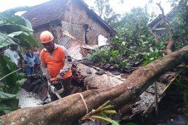 Diterjang angin kencang, belasan rumah rusak  di Jember