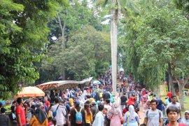 Meningkat, pengunjung Kebun Binatang Ragunan capai 92.880