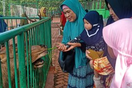 Tahura Sultan Adam diserbu wisatawan