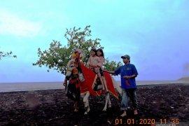 Ada wisata berkuda di Pantai Desa Jangkar Situbondo