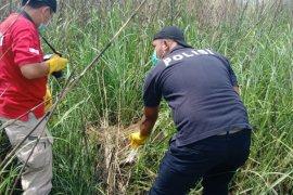 Polresta Sidoarjo tangkap pelaku pembunuhan