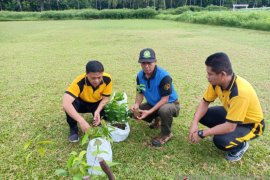 Polres HST peduli penghijauan dengan tanam pohon