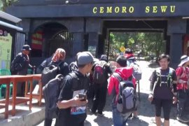 Jalur pendakian Gunung Lawu dari Magetan ditutup sementara