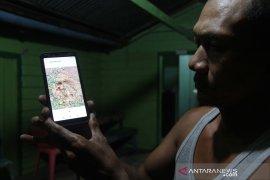 Waduh, info kemunculan harimau di Pelalawan hoaks karena foto editan