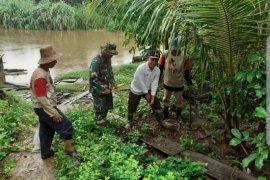 Warga Banua Lawas tanam bambu sepanjang Sungai Tabalong