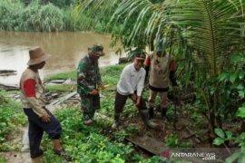 Warga Banua Lawas tanam bibit bambu di bantaran Sungai