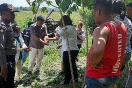 Pemuda asal Medan ditemukan tewas gantung diri di Simalungun