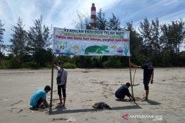 Koalisi Langit Biru daftarkan banding gugatan izin lingkungan PLTU Bengkulu