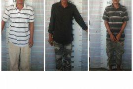 Miliki ganja, tiga warga Sei Lepan dan Babalan ditangkap Polisi Pangkalan Brandan