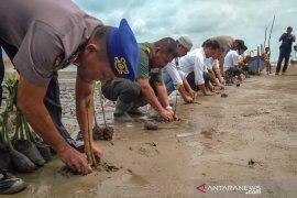 Pantai akan dijadikan wisata mangrove di Aceh Timur