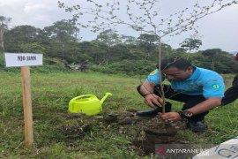 Hari gerakan sejuta Pohon, Sarekat Hijau Sumut dorong seluruh elemen untuk tanam pohon