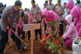 Polda Kalsel tanam 31.296 bibit pohon