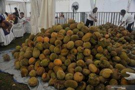 Pengunjung serbu makan durian sepuasnya Page 5 Small