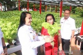 Bupati Karolin minta DPRD Kalbar bantu maksimalkan pertanian di Landak