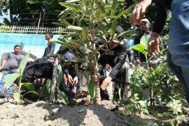 Komunitas pemuda tanam pohon di bantaran Sungai Bah Bolon