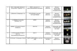 Daftar nama zat NPS yang sudah teridentifikasi di Indonesia Tahun 2019 Page 2 Small
