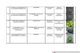 Daftar nama zat NPS yang sudah teridentifikasi di Indonesia Tahun 2019 Page 4 Small