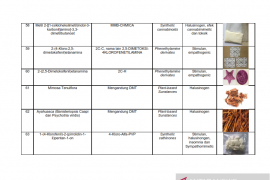 Daftar nama zat NPS yang sudah teridentifikasi di Indonesia Tahun 2019 Page 11 Small