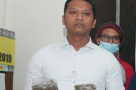 Pemuda Jayapura pengedar ganja terancam dijerat 12 tahun penjara