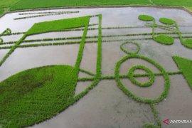 "Karya seni ""Not Khatulistiwa"" di Desa Huntu Selatan menarik minat pengunjung"