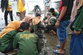 Komunitas Pandah Artgreen Maligi gelar konservasi ribuan telur penyu