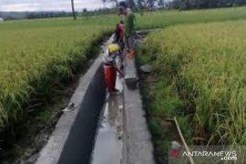 Sebelas desa di Kabupaten Kutai Timur dapat bantuan irigasi dari Pusat