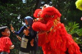 Kebun Binatang Bandung tampilkan atraksi Barongsai sambut Imlek