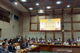 Gubernur Babel sampaikan perniagaan lada dan pertimahan ke DPR RI