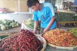 Harga cabai rawit di Cianjur melambung jadi Rp100.000 per kilogram
