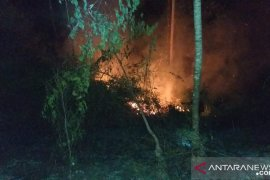 Polresta Ambon : Karhutla di hutan Hatalai tidak timbulkan kerugian