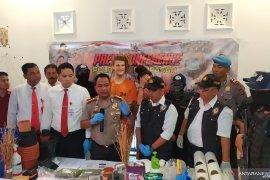 Polresta Denpasar tangkap pasangan Rusia produksi ganja rumahan