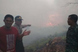 Lahan kosong kembali terbakar di Aceh Jaya