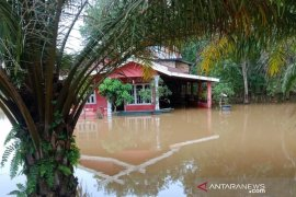 Debit air Sungai Batanghari meningkat dan rendam pemukiman