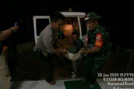 Sedang mencari kayu, Pria di Inhil tewas diterkam harimau