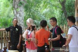 Virus Corona - Dampak virus Corona, kunjungan wisatawan China ke Bali Zoo menurun