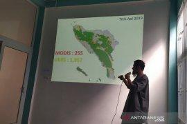HAkA sebut Aceh kehilangan hutan 41 hektare per hari