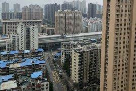 China minta produsen pangan lanjutkan produksi di tengah wabah corona