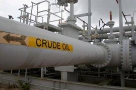 Harga minyak jatuh dalam 5 hari beruntun, dipicu wabah Virus Corona