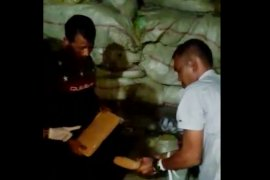 Lima kurir pembawa ganja 250 kilogram ditangkap  BNN dan Bareskrim Polri