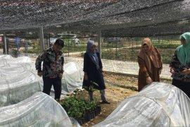 Pemerintah Aceh-Unsyiah bangun desa wisata nilam