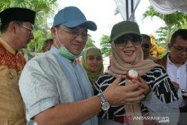 Gubernur Erzaldi berharap manggis Belitung go Internasional