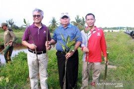 Pemkab Tanjab Barat gandeng Petrochina tanam mangrove