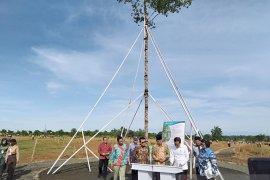 Presiden Jokowi tanam pohon Marsawa di HPN  2020