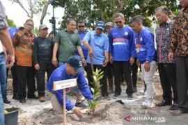 Gubernur Erzaldi luncurkan gerakan tanam mangrove di Pantai Tanjung Rusa
