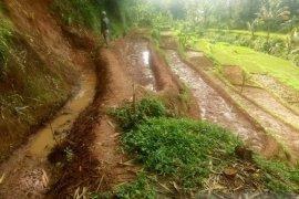 84 kejadian bencana terjadi sepanjang Januari di Kabupaten Sukabumi