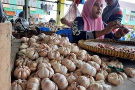Harga bawang putih di Jambi masih tinggi