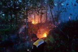 Kebakaran lahan dan hutan kembali terjadi di pulau ambon