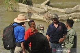 Warga Australia bantu penyelamatan buaya ban Page 1 Small