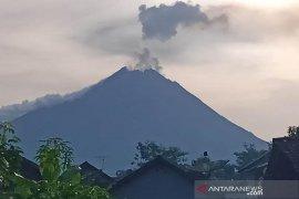 Gunung Merapi alami erupsi pada Kamis pagi