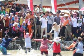 Komunitas pecinta budaya di Trenggalek gelar Festival Sawah